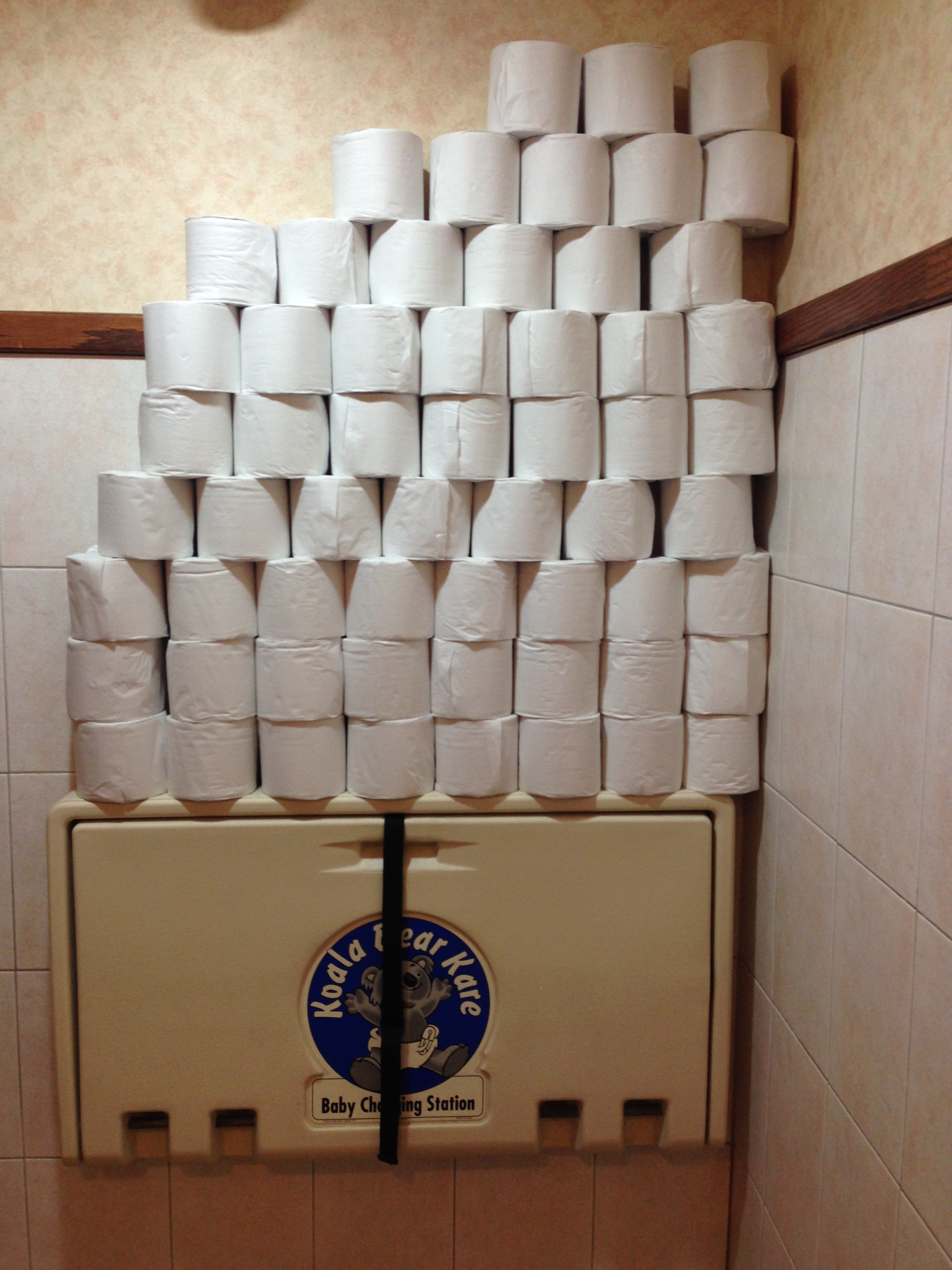 This was taken at the Lincoln Park Zoo in Chicago. I don't even know what to say about this. What the Hell where they expecting to have happen that would require this much TP?