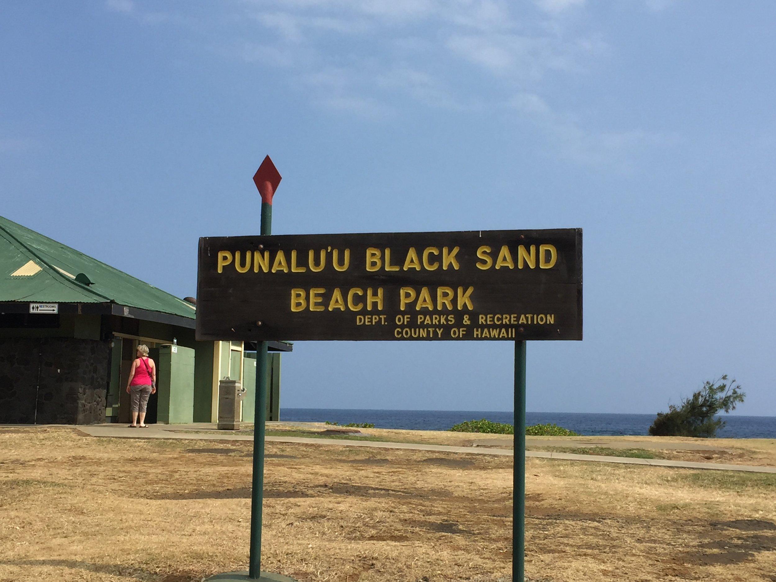 Black Sand Beach - 2016