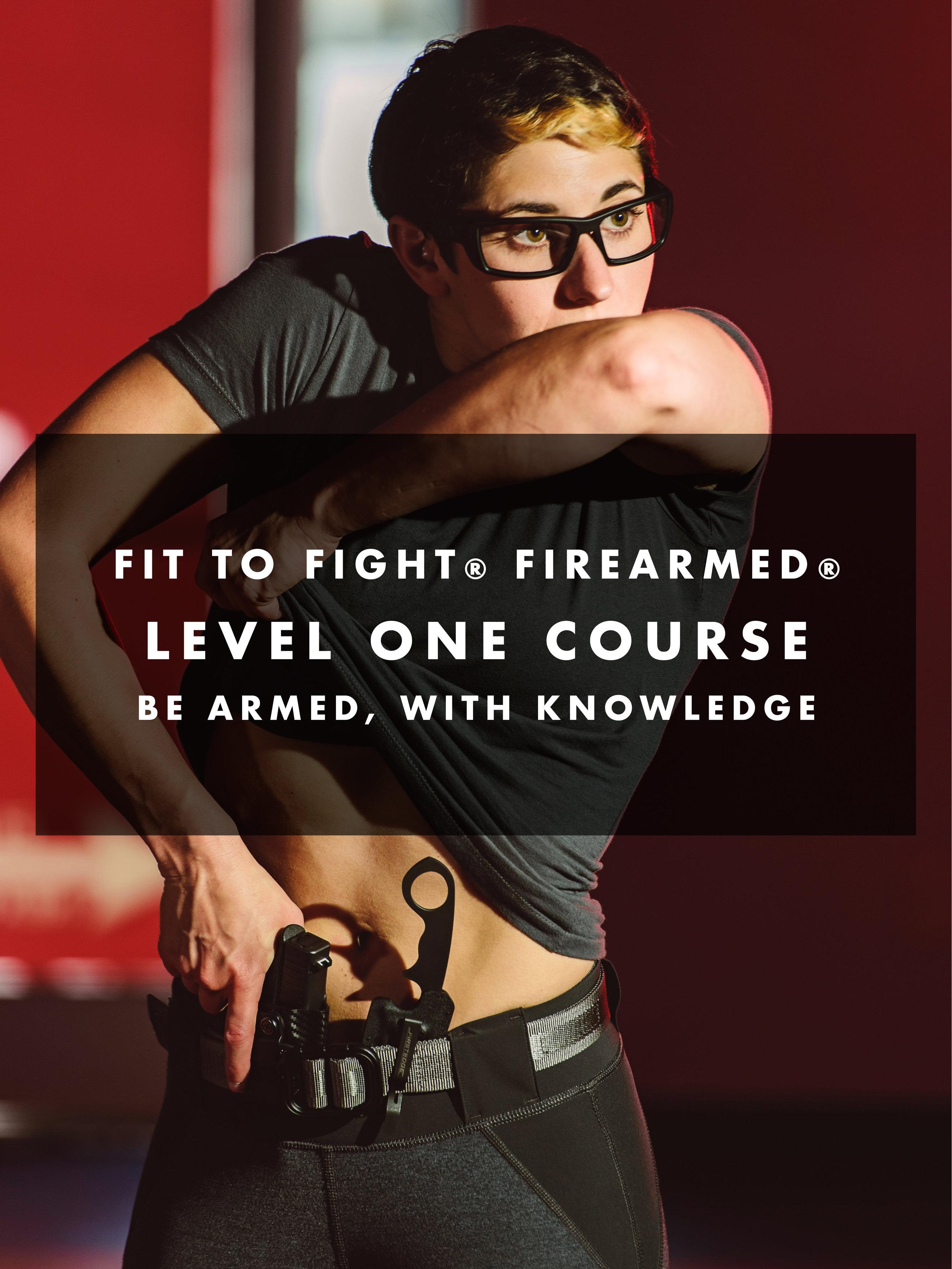 firearmedimageslev1-1.jpg