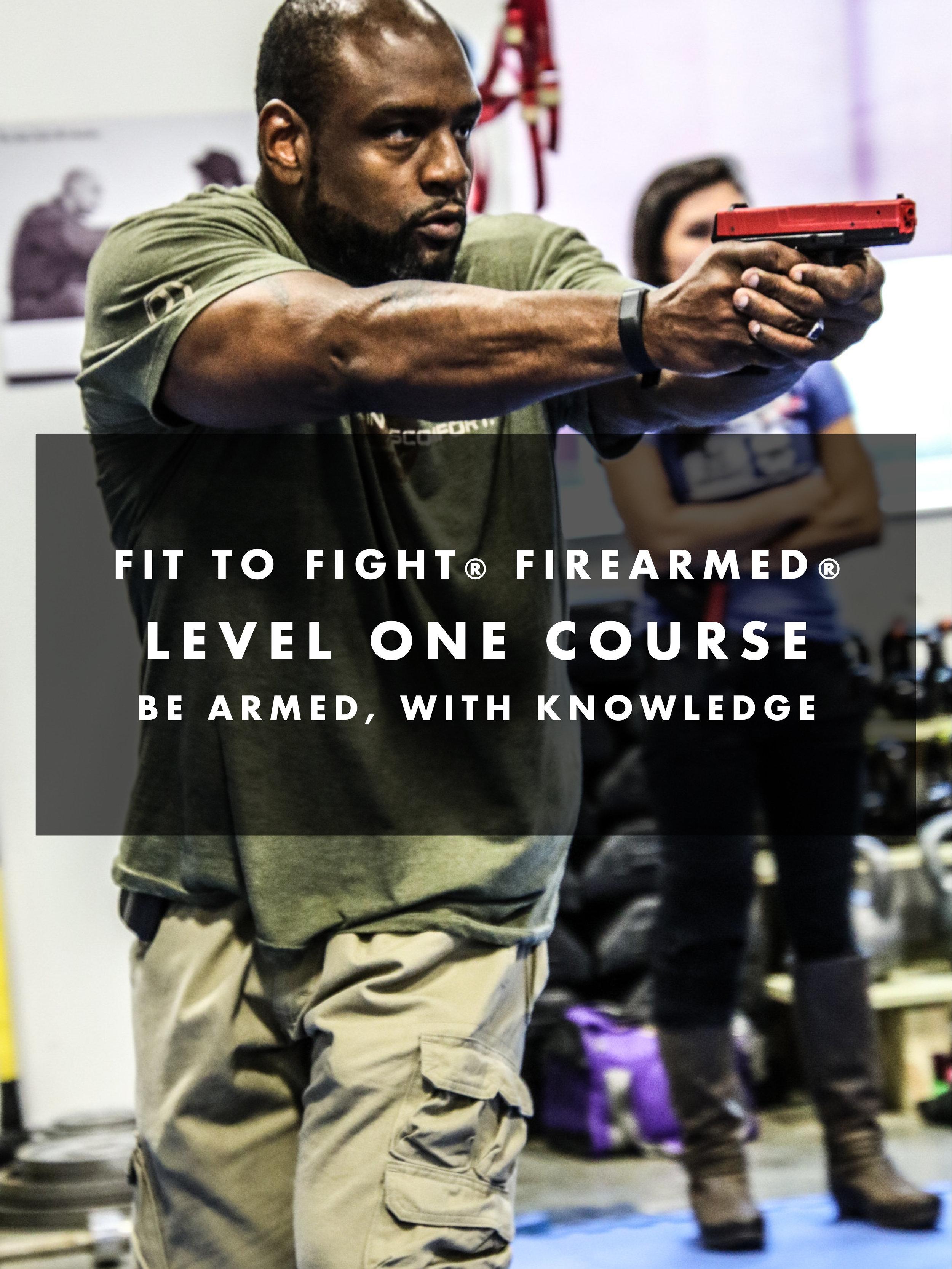 firearmedimageslev1-4.jpg
