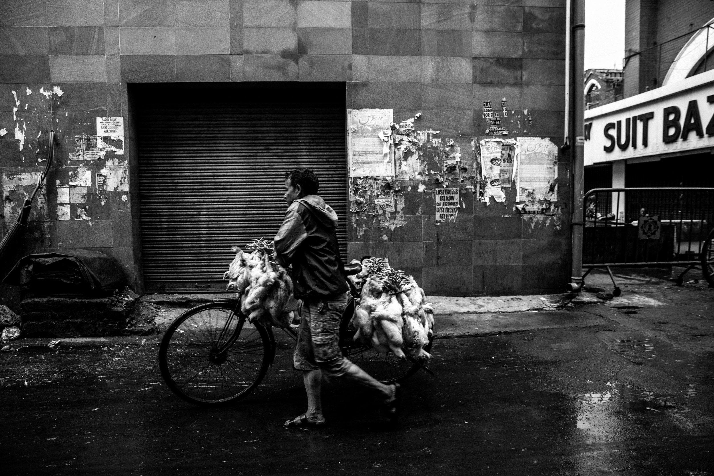 New Market - Kolkata - 687- Social Res.jpg