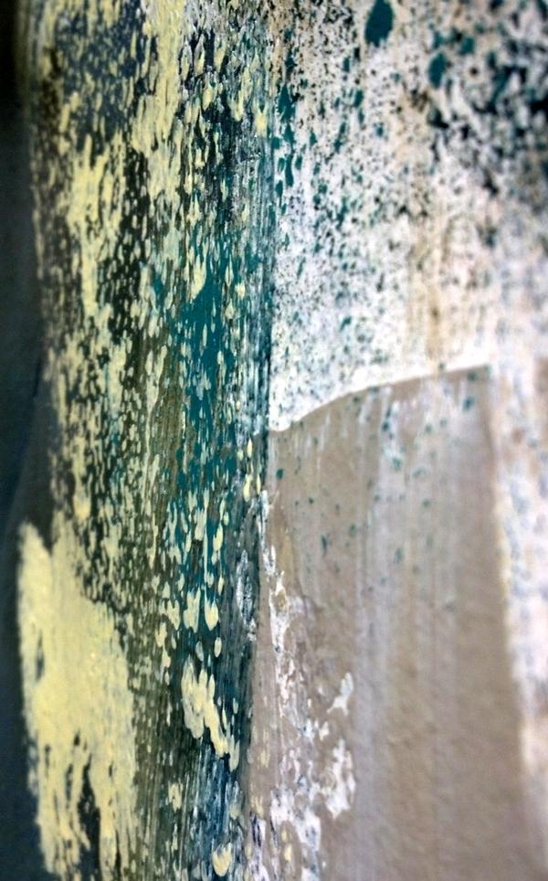 K_final_Closeup1.jpg