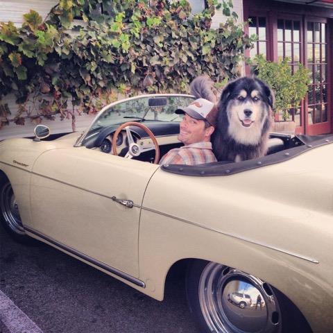 Photo of Pete Burnham with Lama from Lama Dog's website.