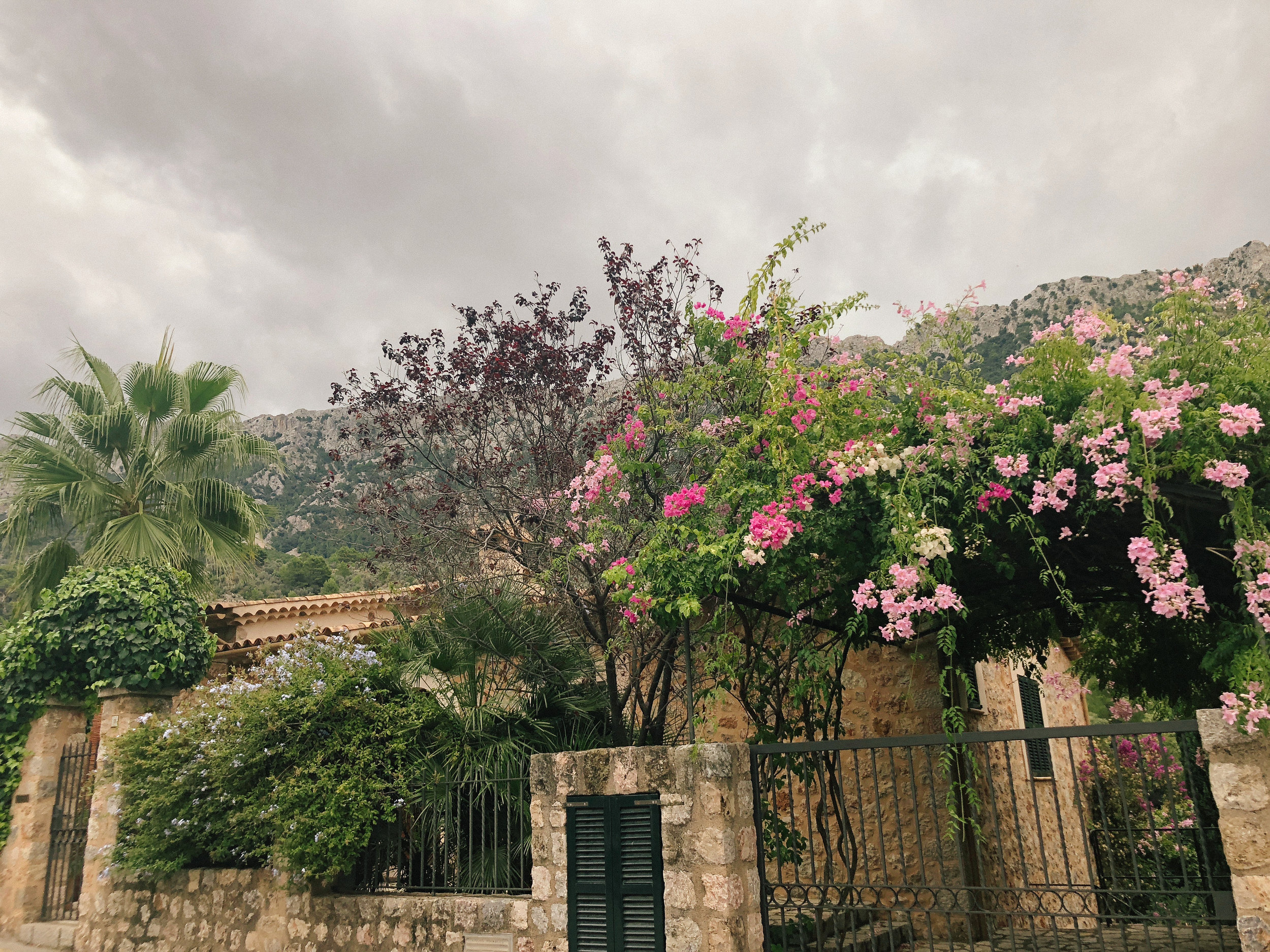 Mallorca*-38.jpg