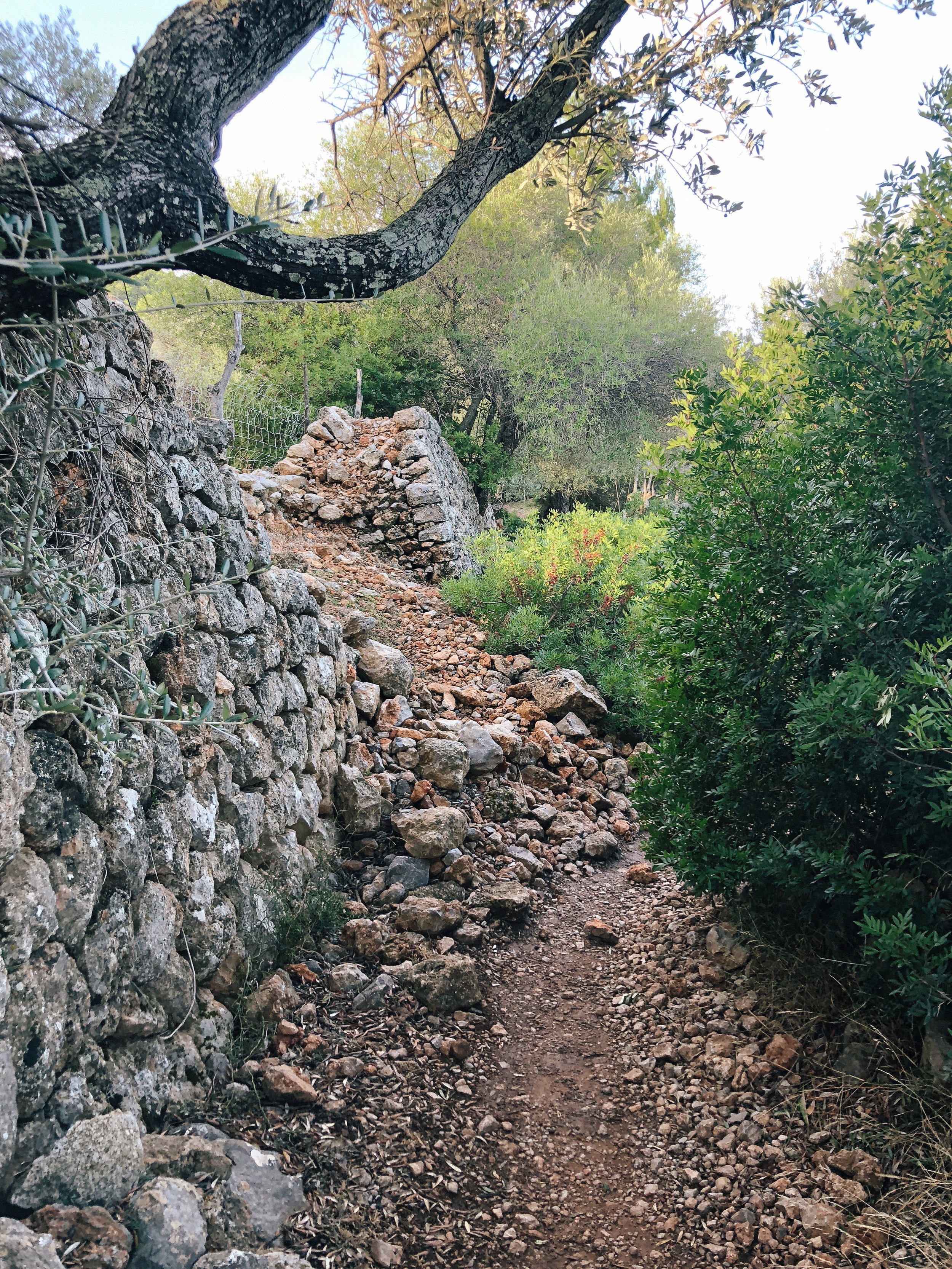Mallorca*-55.jpg
