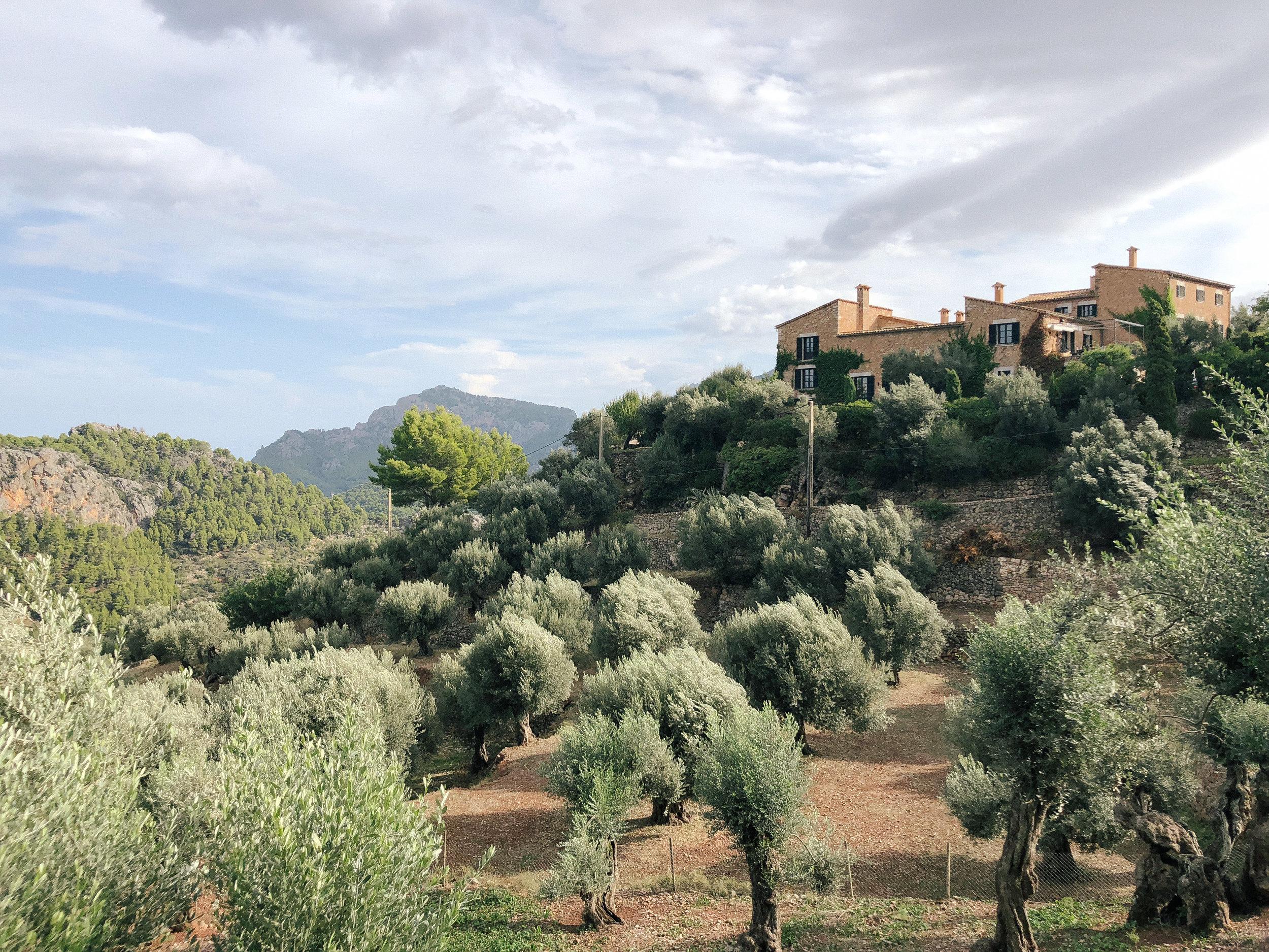 Mallorca*-69.jpg