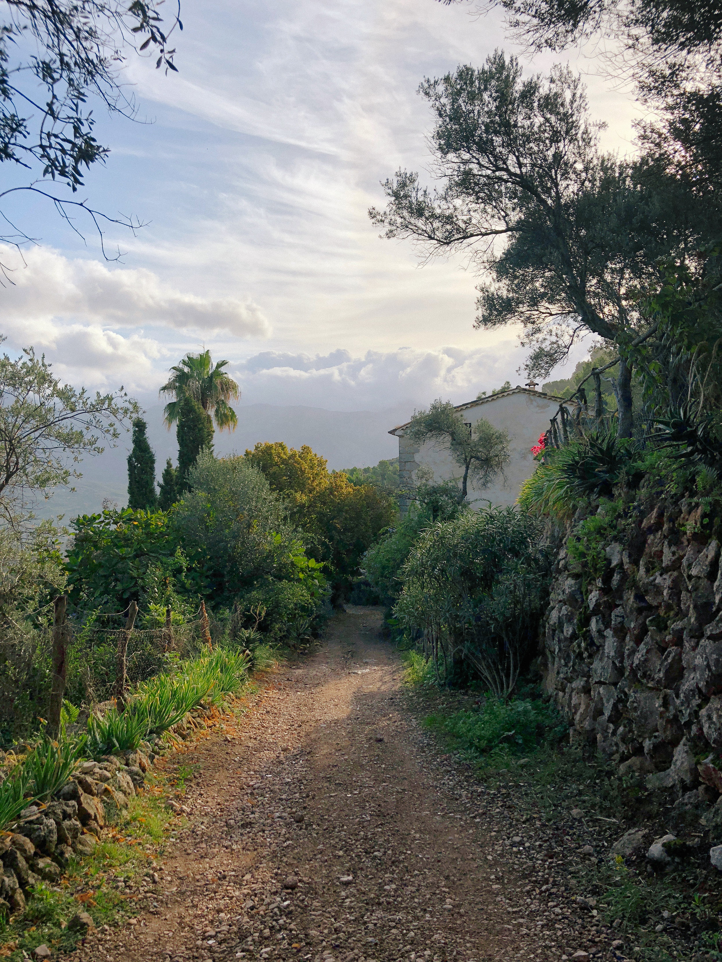 Mallorca*-61.jpg