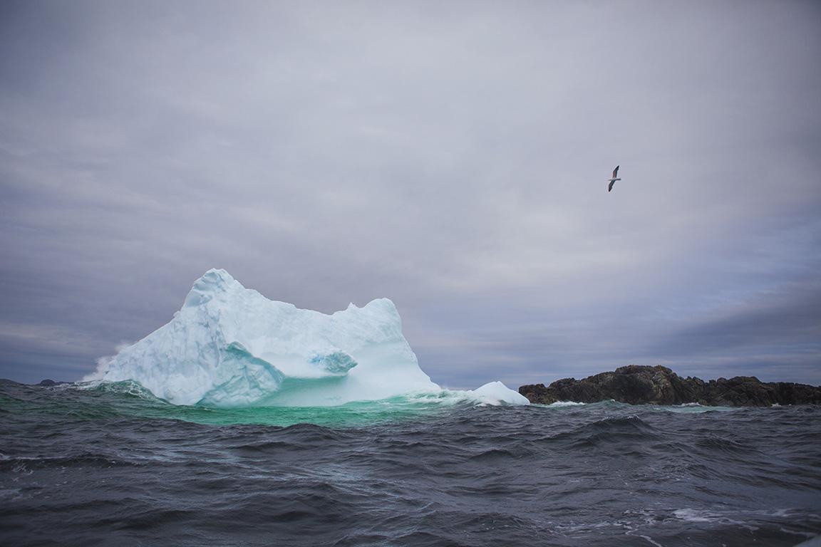 Fogo Island Iceberg