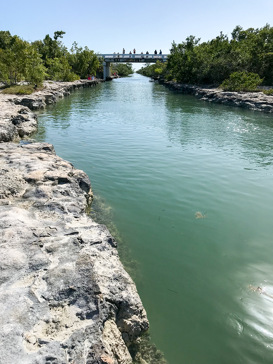 The Jumping Bridge on Sugarloaf Key. Owen jumped.