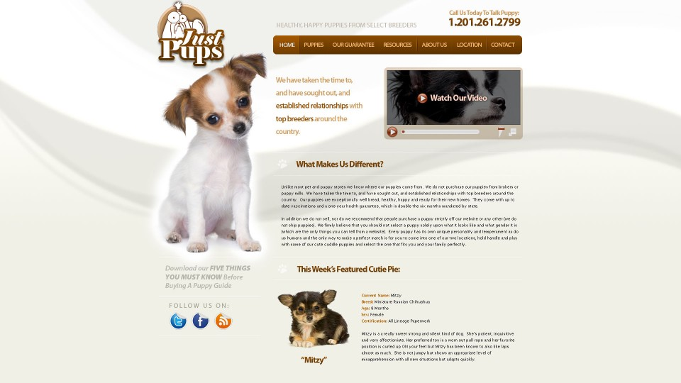 just-pups.jpg