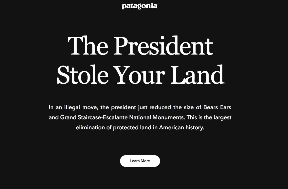 Patagonia has taken a stance! - Dana Chirps