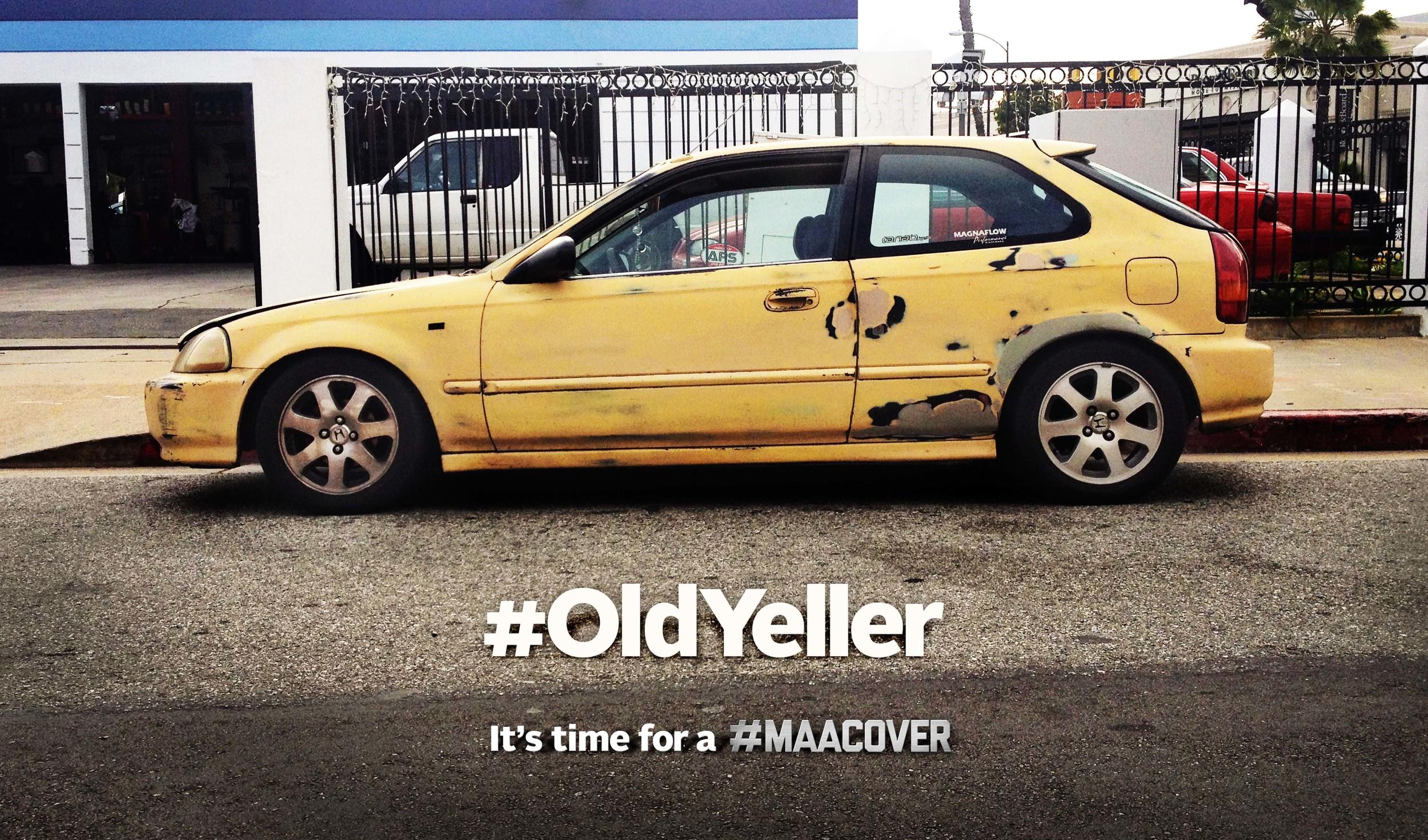 #OldYeller.jpg