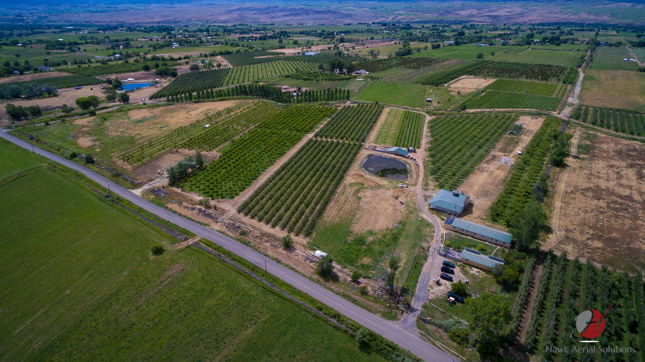 Mesa Winds Farm wm-1.jpg