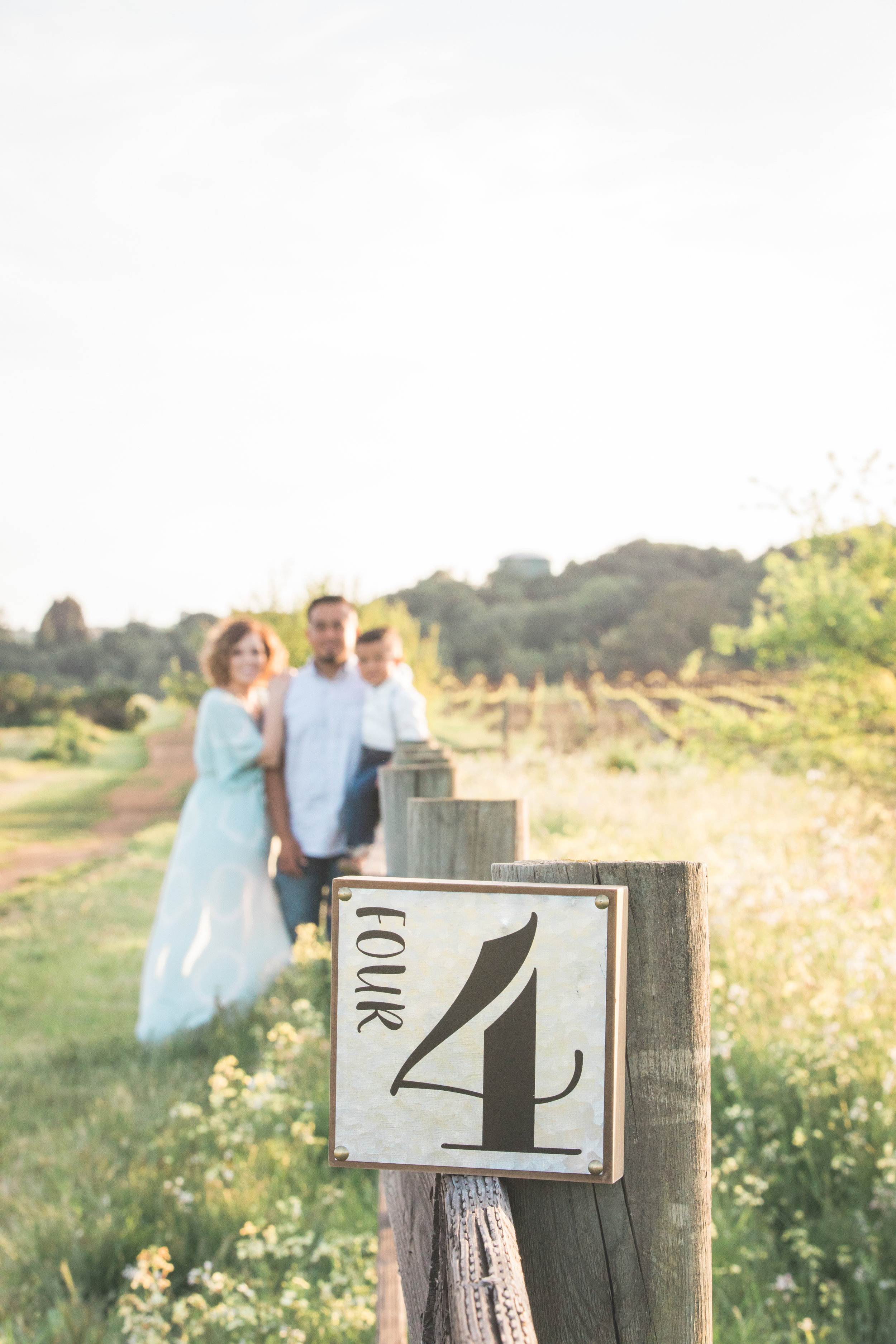 Mr & Mrs Photography-56.jpg