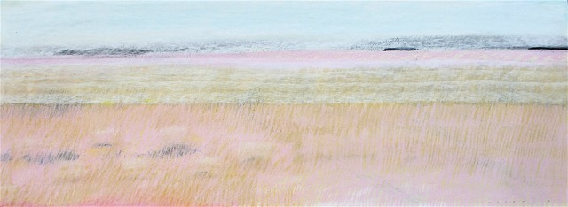 Land, Summer (2016)  pastel on paper  40x107cm