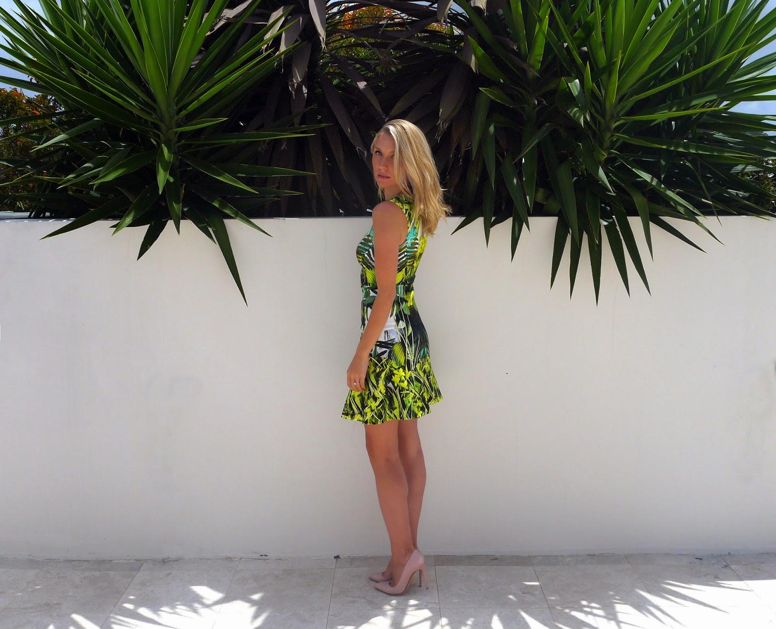 palm%2Btree%2B2.jpeg