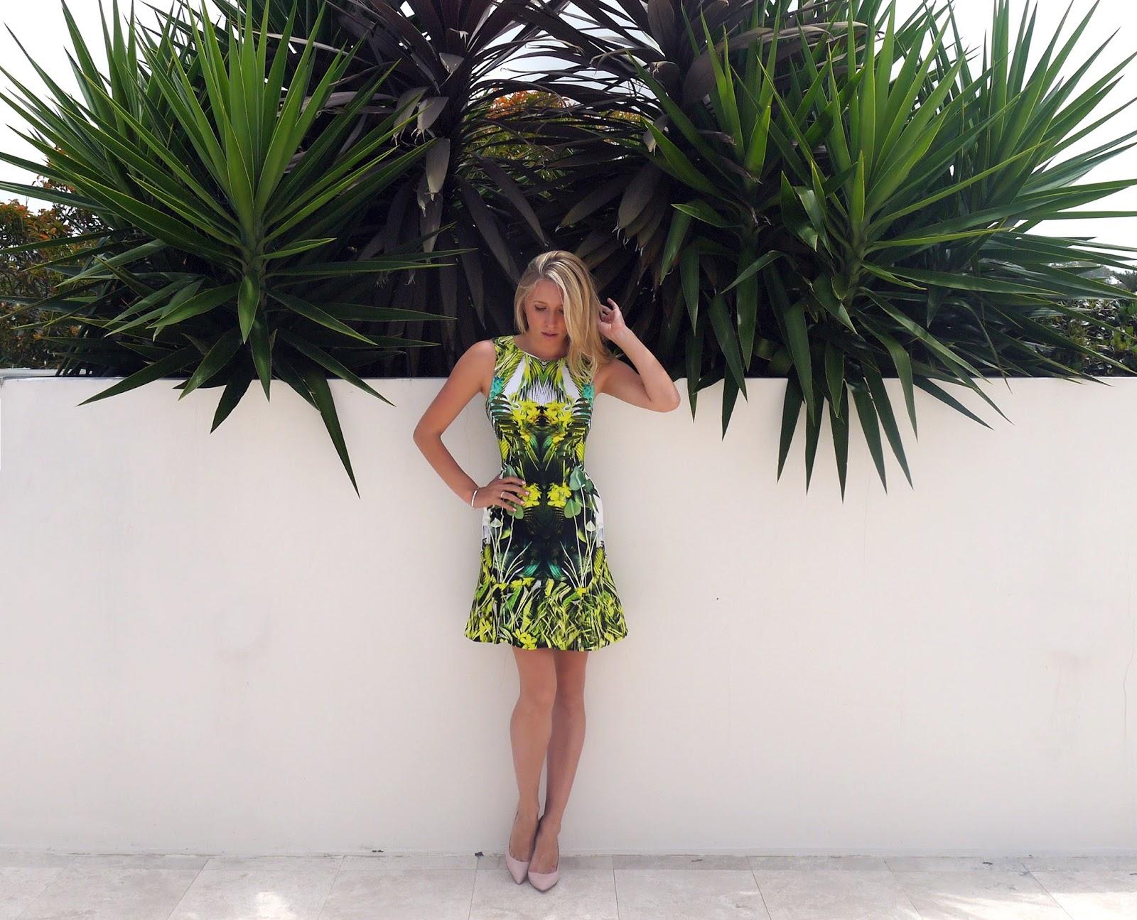 palm%2Btree%2B3.jpeg