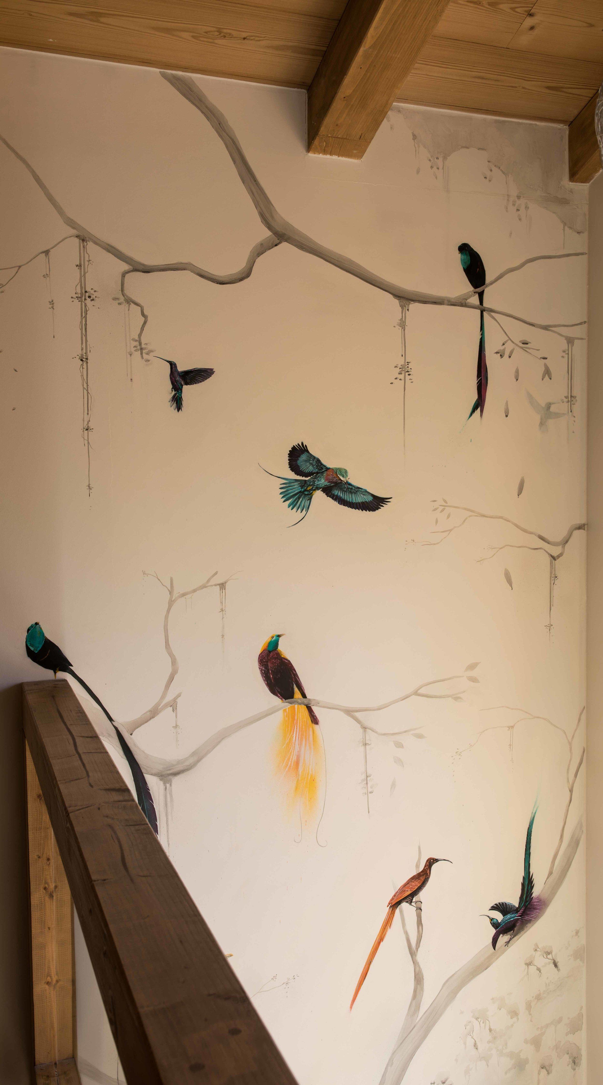 birds-upper-wide.jpg