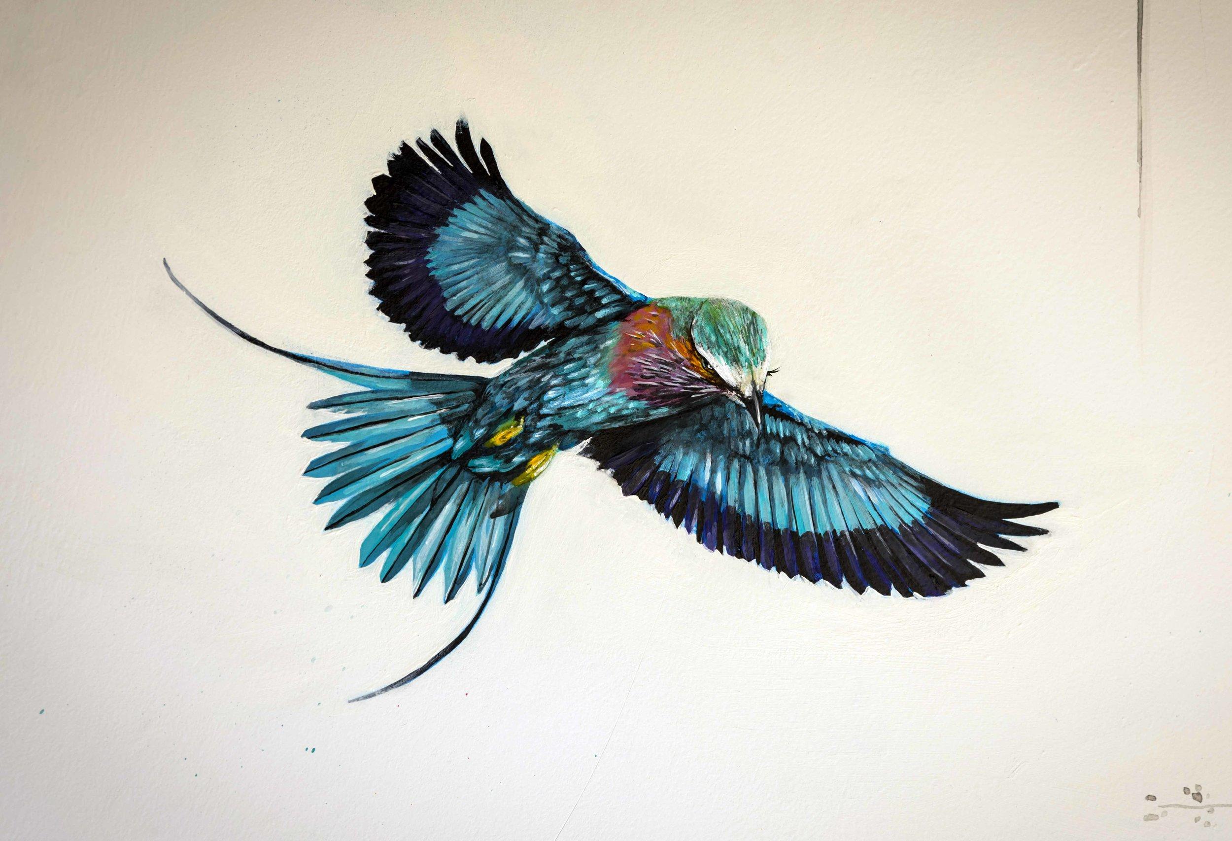 blue-in-flight.jpg