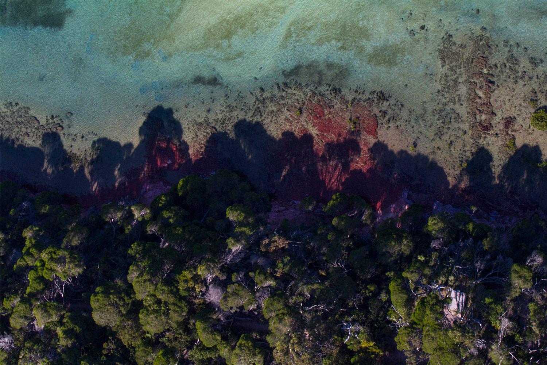 Nature'sTablecloth,Merimbula NSW