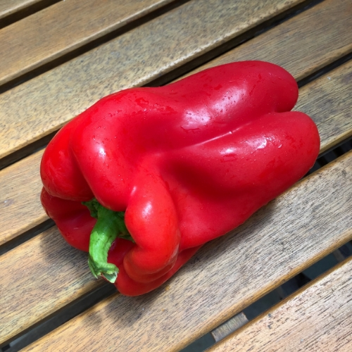 Red, orange or yellow peppers are great for your health an weight loss.