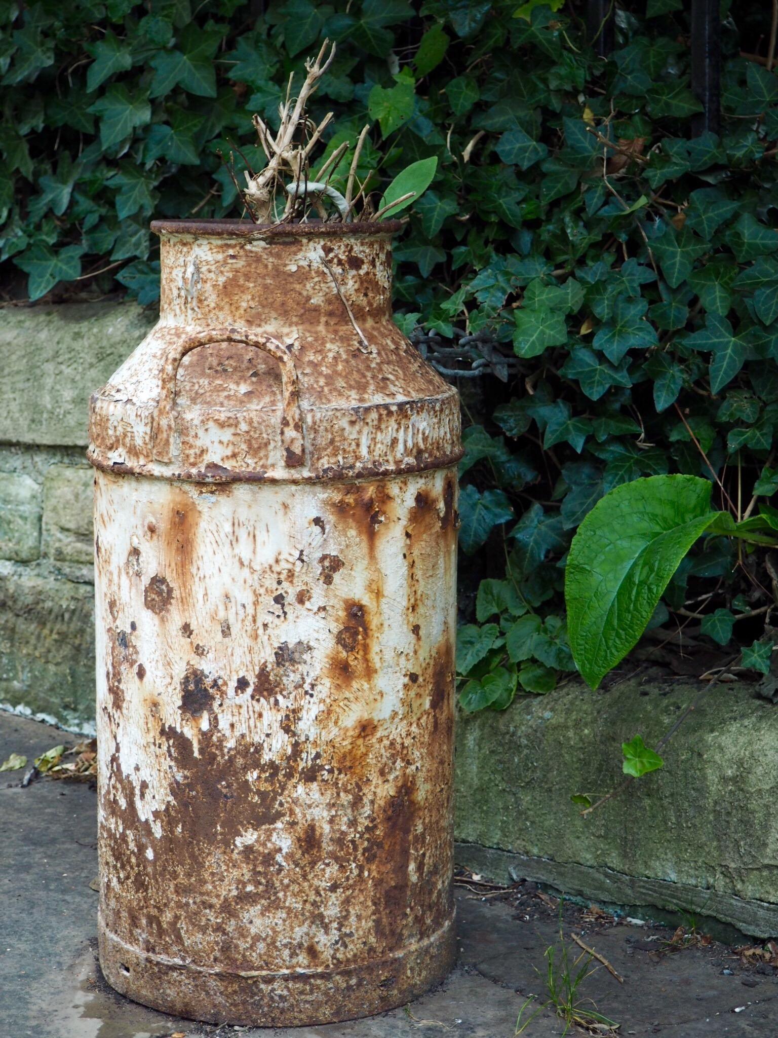 Gorgeous old milk churn in Hastings.