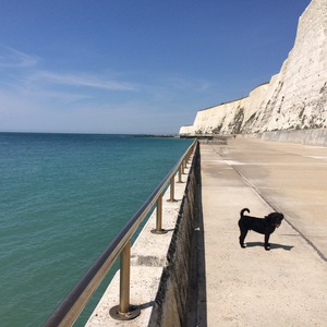 Brighton, summer 2015