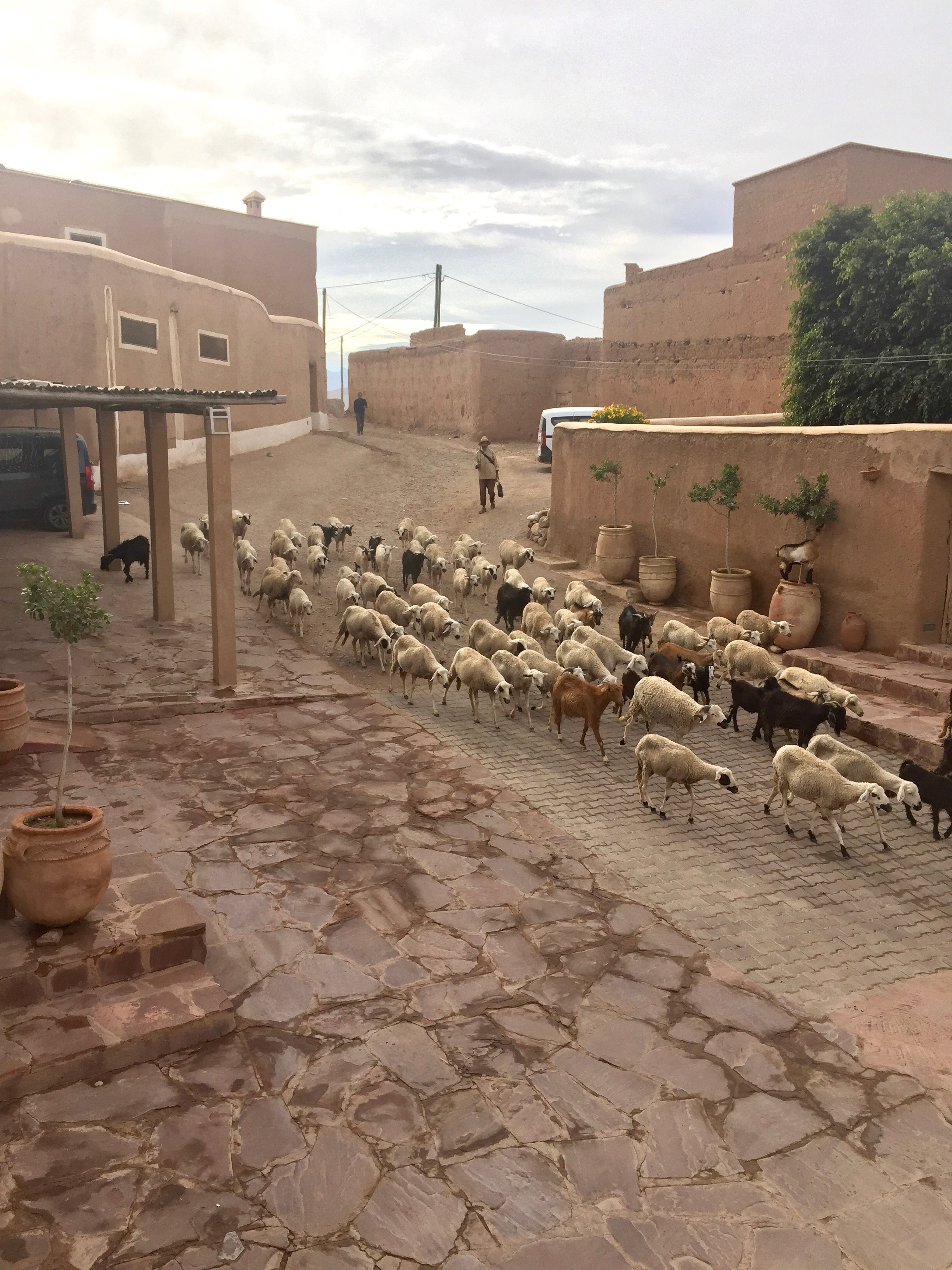 A berber village outside Marrakech