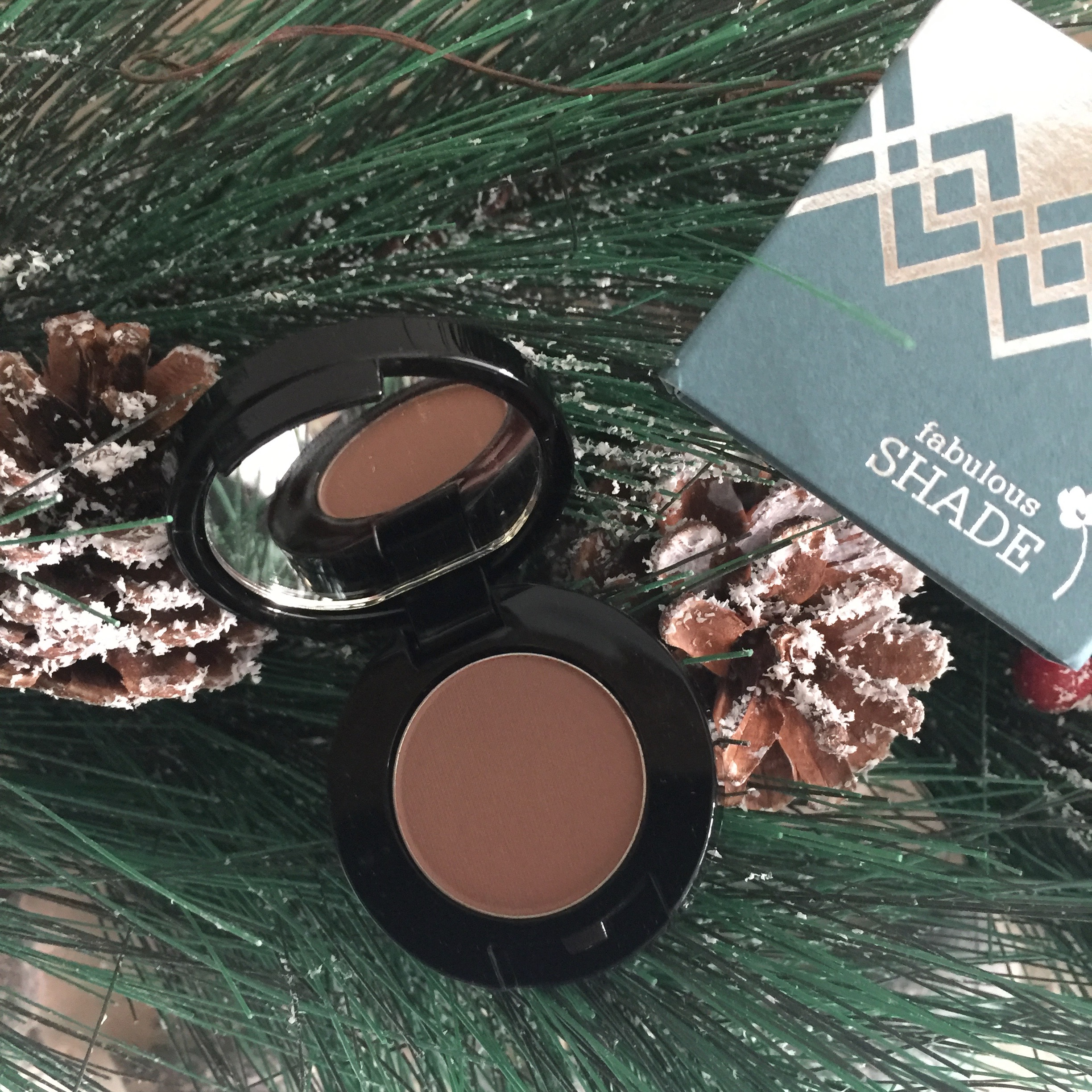 LOOK FABULOUS FOREVER, COCOA EYE SHADOW.
