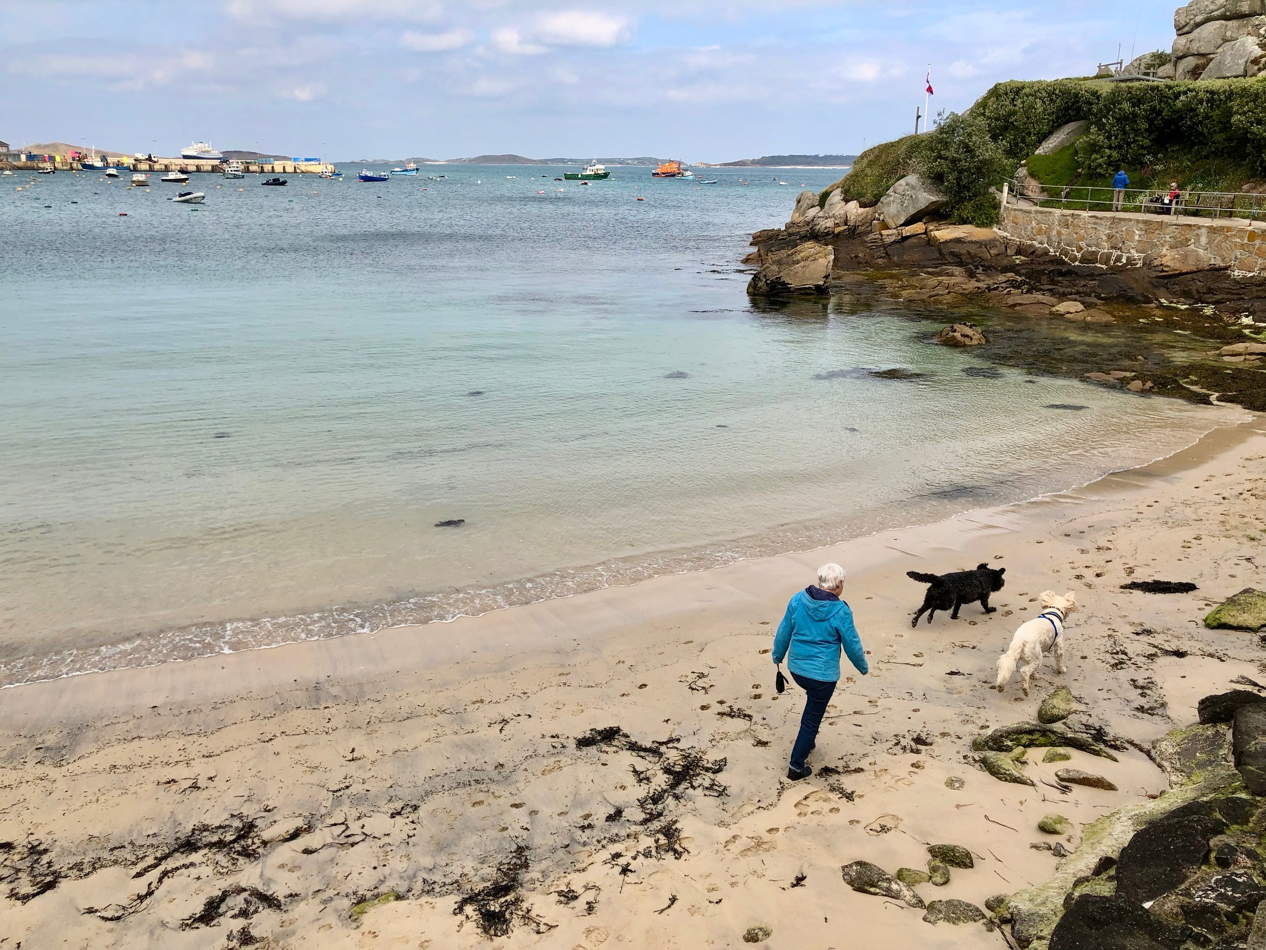 Dog friendly Scilly Isles.jpg