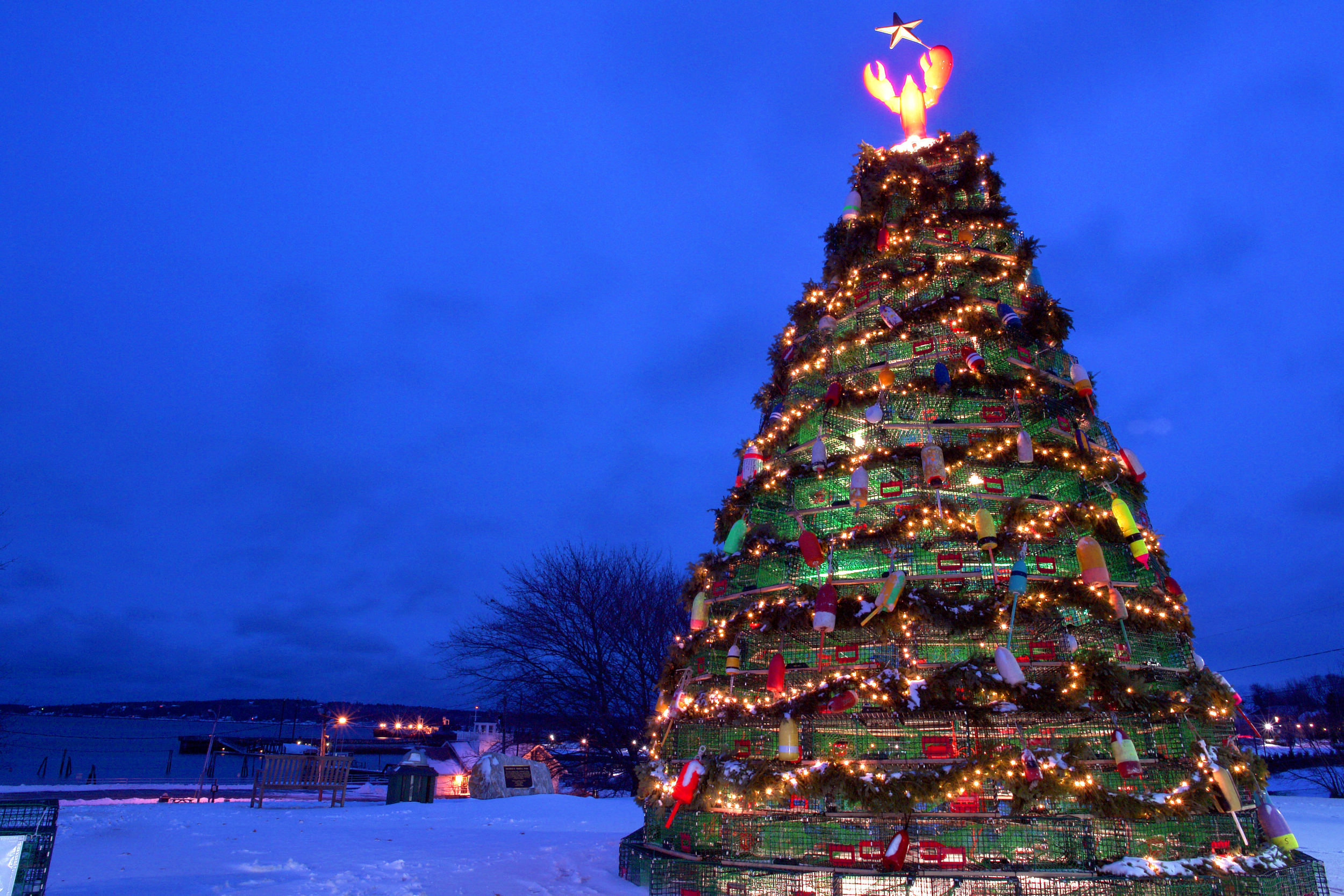 World's Largest Lobster Trap Tree at Festival of Lights