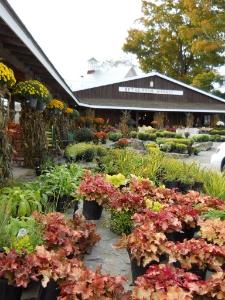 Beth's Farm Market, Marti Mayne photo.
