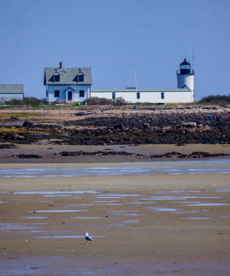 Goat Island Lighthouse, Cape Porpoise, ME (near Kennebunkport). Photo by  PJ Walter Photography .