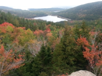Fall colors in Acadia National Park. Photo by Kristi Losquadro.