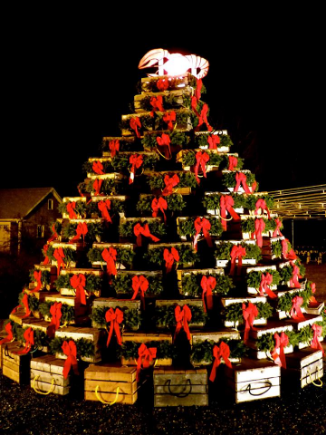 Bar Harbor has their own version of a Lobster Trap Christmas Tree.