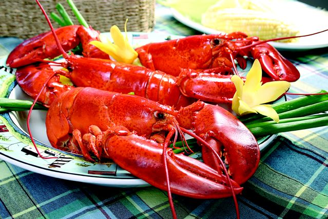 Photo credit: Maine Lobster Promotion Council