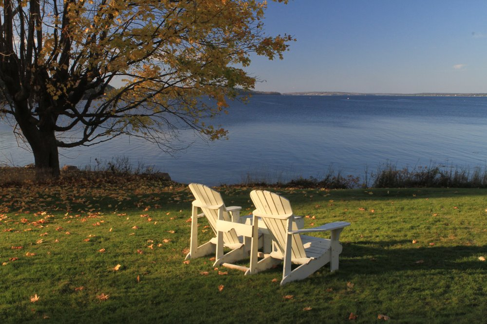 Take in the fall views of Frenchman's Bay from the back yard of Saltair Inn Waterfront B&B.