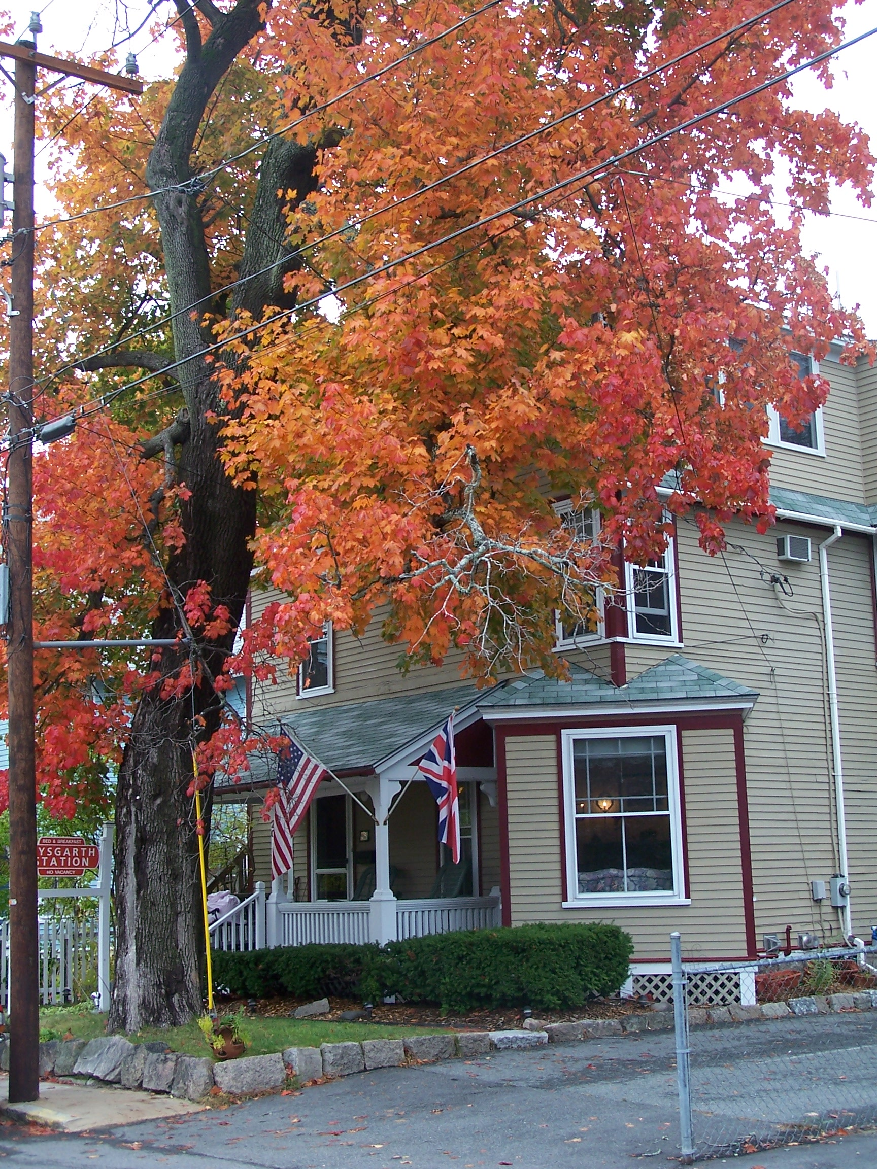 At Aysgarth Station B&B, Bar Harbor leaf peeping starts right in the front yard.