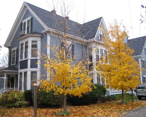 Colorful trees ring the Brewster House B&B. Brewster House photo.