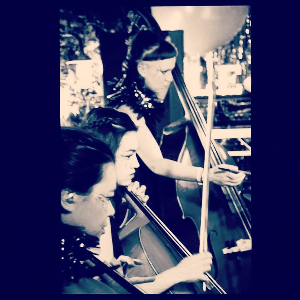 Cellos Normski SH.jpg