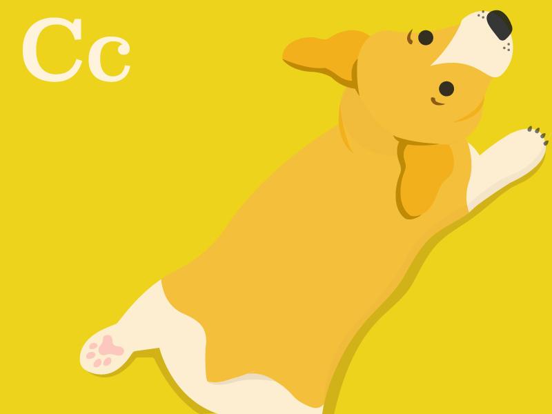Dog_Dribbble_Corgi.jpg