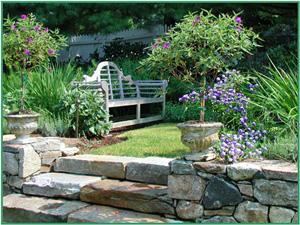 Pruning frames an intimate spot.