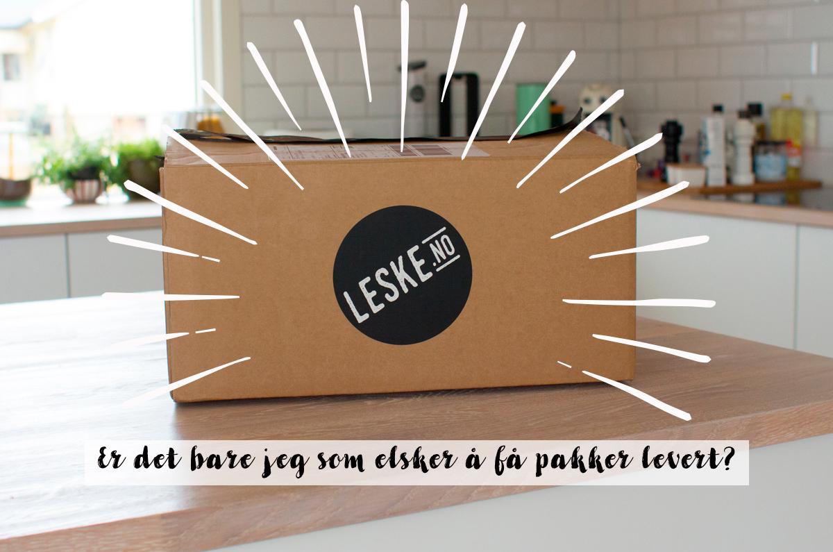 Magevennligmat_leske_2_illu.jpg