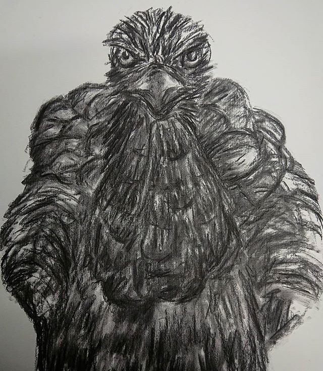 Doing student assignments... #charcoaldrawing #bird