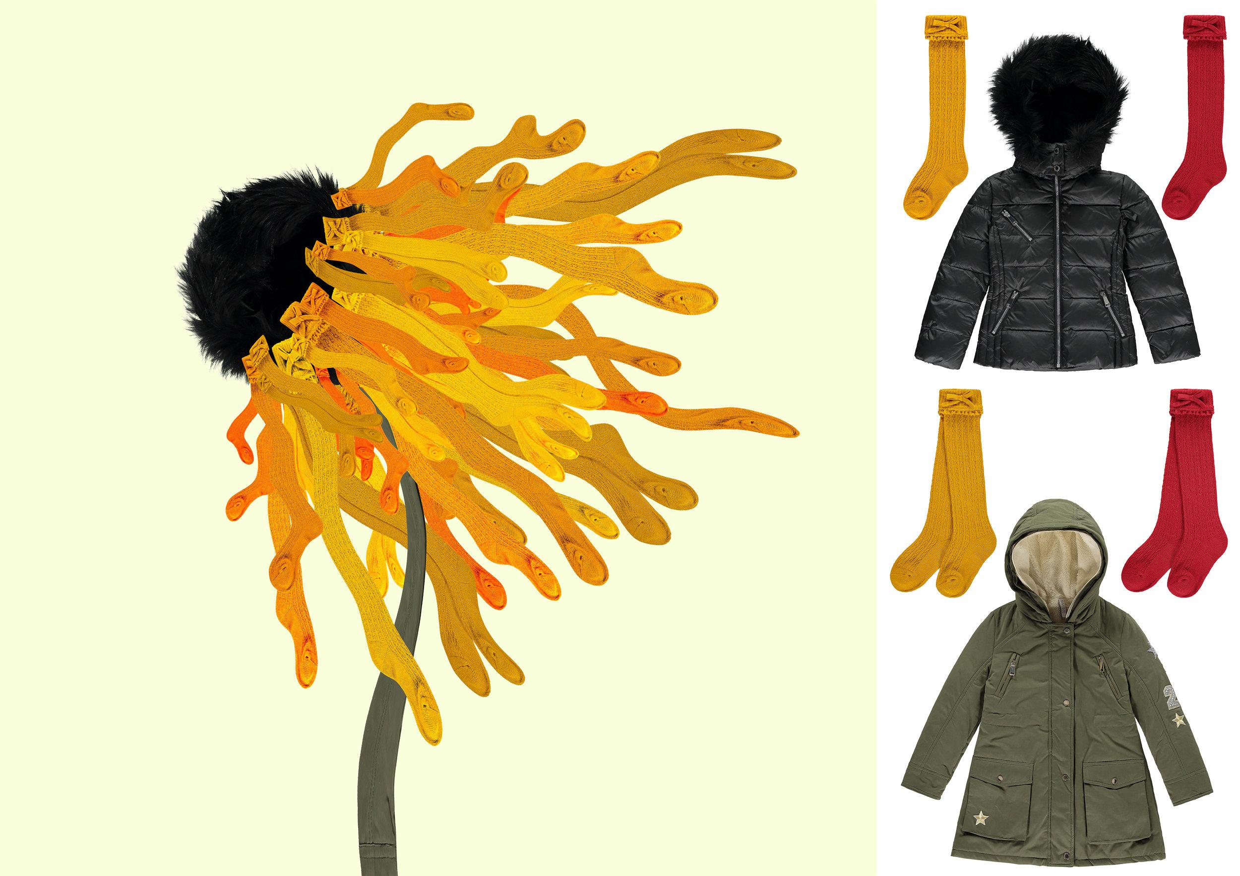 Wind Flower.jpg