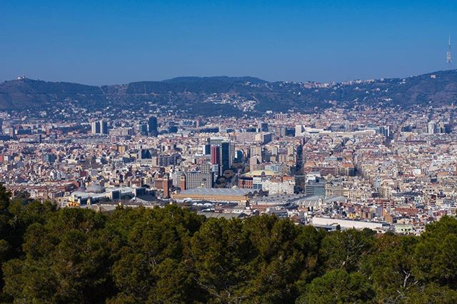 Nothing's better than appreciating a city from above... some beautiful views of Barcelona from Montjuïc … …  #cityscapes_unlimited #city_captures #cityview #cityscape #cityphotography #barcelona #barcelonaphotography #spain #espana #montjuic #montjuïc #travelphotography #travelgram #beautifuldestinations #explorer #exploretheglobe #goexplore #architecture_greatshot #barcelonaspain #barcelona_world #ig_barcelona #visitbarcelona #barcelonagram #thebarcelonist #ig_catalonia #monumental_catalunya