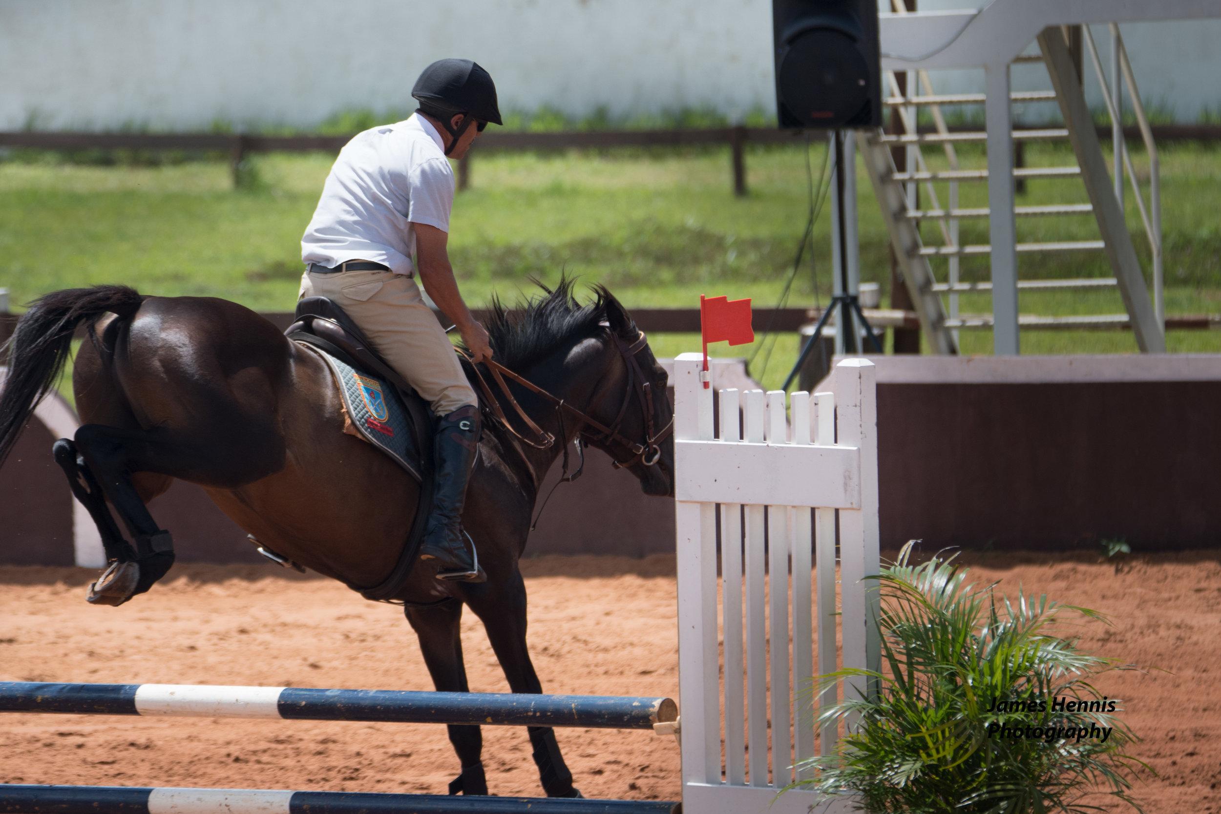 CG-Horse76.jpg