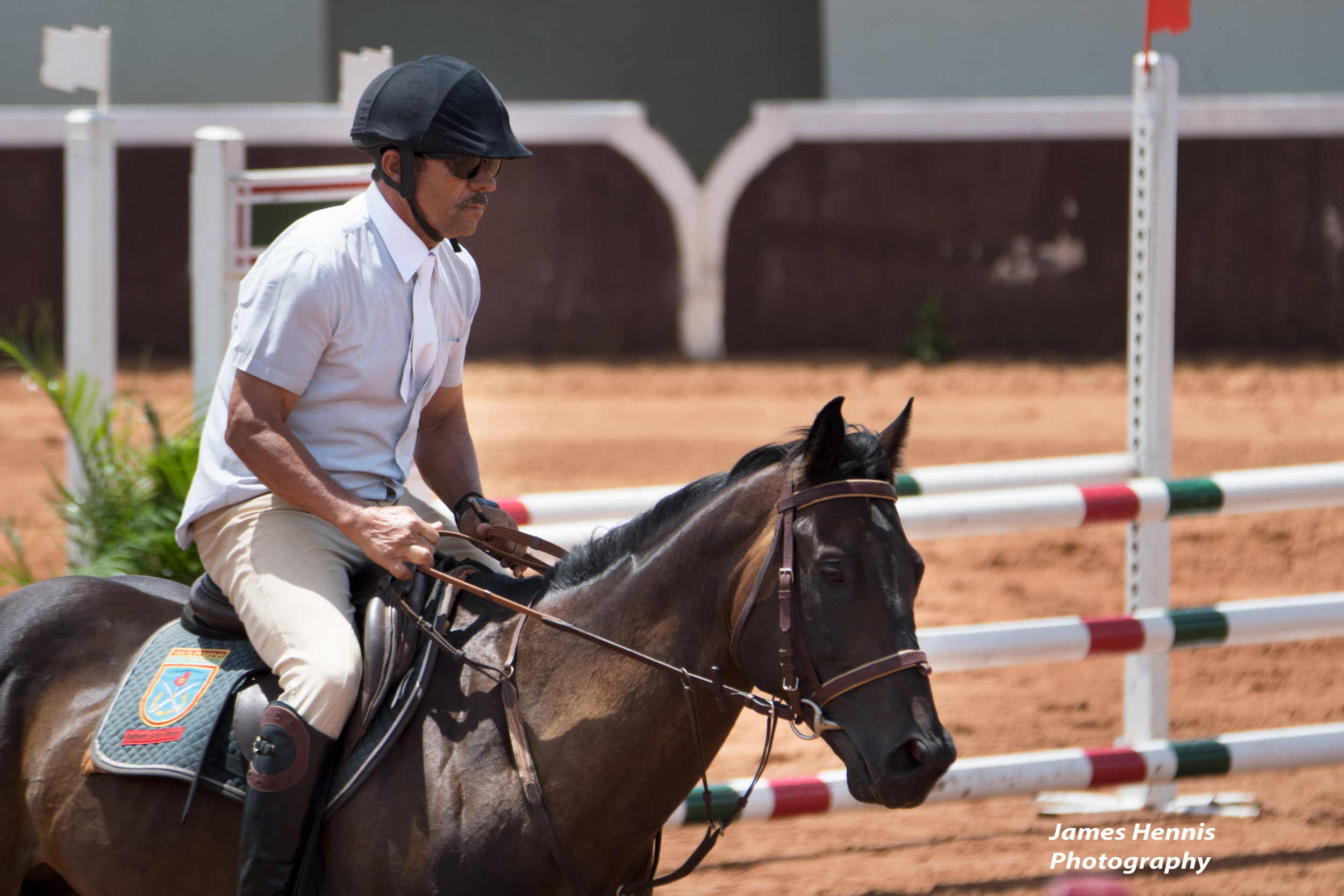 CG-Horse78.jpg