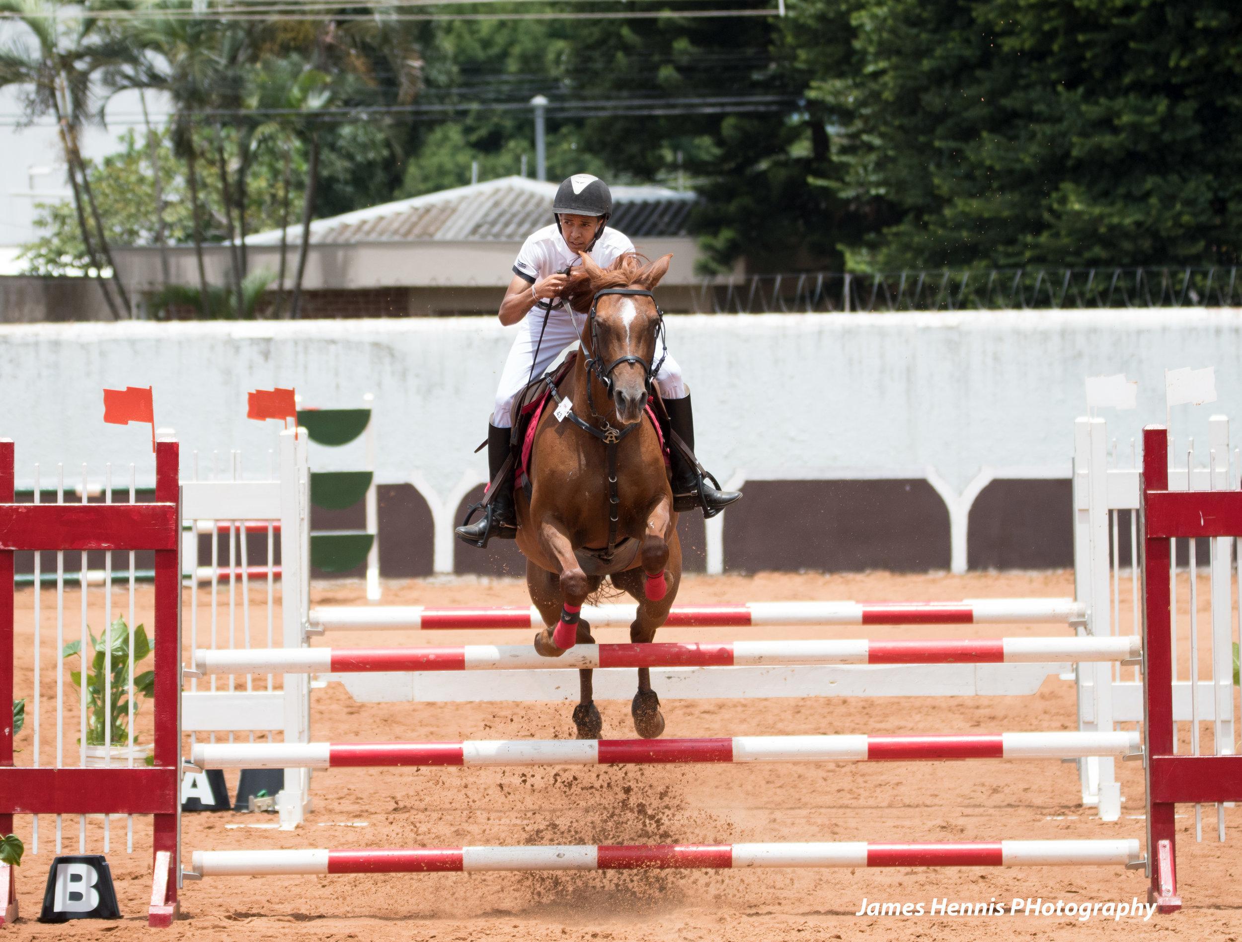 CG-Horse148.jpg