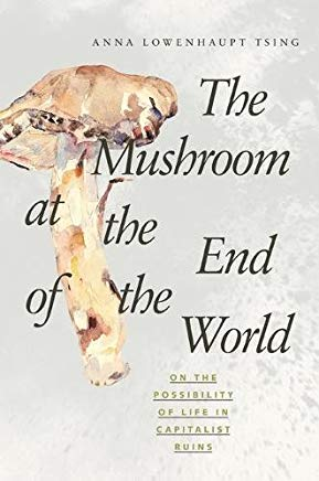 The Mushroom at the End of the World: On the Possibility of Life in Capitalist Ruins    by  Anna Lowenhaupt Tsing
